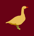 in flat style goose vector image vector image