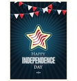 Independence day American signs with flag stripes vector image vector image