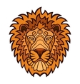 Lion head color mascot vector image vector image