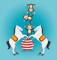 monkeys and horses circus show vector image