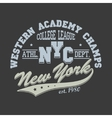 New York City Typography Graphics T-shirt vector image