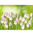 Pink tulips on soft background EPS 10 vector image