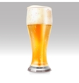 Realistic glass with light beer vector image