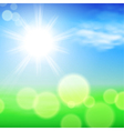 Summer sunshine background vector image vector image