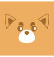 cute brown raccoon face background vector image vector image