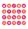 forest berries colored flat glyph icons vector image vector image