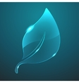 glass leaf icon Eps10 vector image vector image