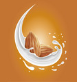 milk splash with almond nuts vector image vector image