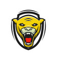 panther logo mascot design sport isol vector image vector image