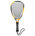 Racketball vector image vector image
