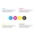 simple cmyk infographic template business concept vector image vector image