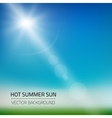 hot summer sun background vector image