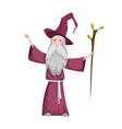 medieval kingdom character isolated old wizard vector image vector image