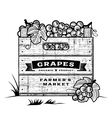 retro crate grapes black and white vector image vector image