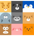 various cute face animal face vector image