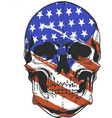 america flag painted on a skull vector image