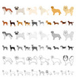 dog breeds cartoon icons in set collection for vector image vector image