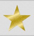 golden star on transparent background vector image vector image
