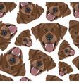 seamless pattern chocolate labrador vector image vector image