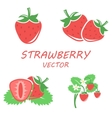 flat strawberry icons set vector image