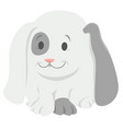 barabbit cartoon animal character vector image vector image