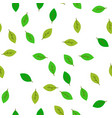 seamless pattern green leaves flat vector image