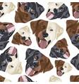 seamless pattern labrador diversity vector image vector image