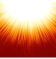 Sunburst rays vector image vector image