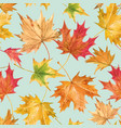 beautiful seamless autumn pattern with vector image
