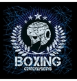 Boxing labels on grunge background vector image