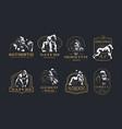 collection vintage gorilla emblems vector image