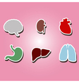 color icons with organs of the human body vector image
