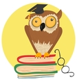 Crazy owl sitting on books vector image