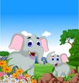 Cute elephant cartoon in the jungle