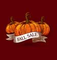 fall sale sketch pumpkins vector image vector image