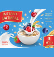 oatmeal advertising with forest berries vector image vector image