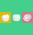 realistic marshmallows on a colored background vector image