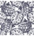 sugar-apple background vector image vector image