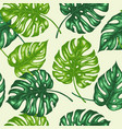 tropical pattern with palm leaves vector image