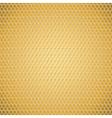 Golden honeycomb texture vector image