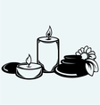 Basalt stones flower and candles vector image