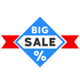 big sale flat icon vector image vector image