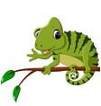 cartoon cute chameleon vector image