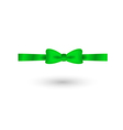 green elegant bow vector image vector image