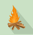 small woods fire icon flat style vector image vector image