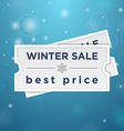 Two tickets to the winter sale and best price vector image