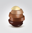 Chocolate slices made egg shape vector image vector image