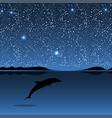 dolphin sea animal night landscape vector image vector image