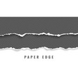 horizontal torn paper edge ripped squared vector image vector image