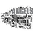 what do angels look like text word cloud concept vector image vector image